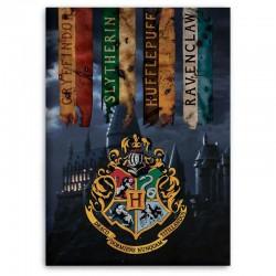 Manta polar Hogwarts Harry...